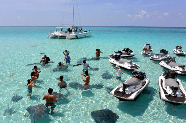 is stingray city dangerous