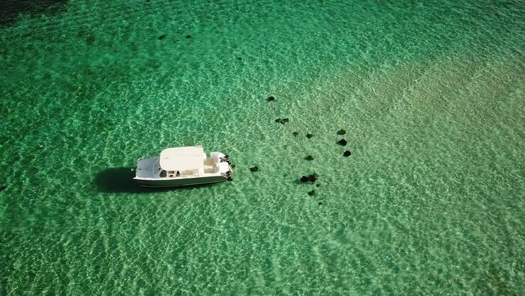 aerial picture of boat at stingray city surrounded by stingrays