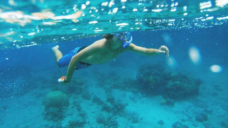 picture of person snorkeling