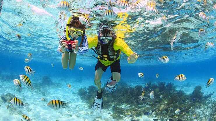 picture of two people snorkeling surrounded by fish