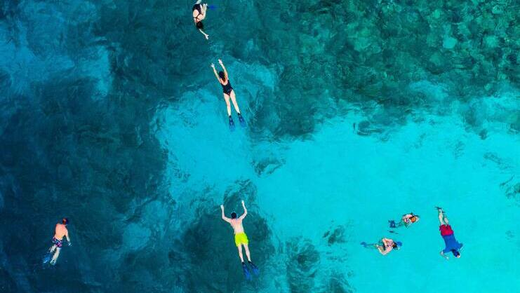 picture of people snorkeling