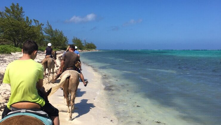 picture of people riding horses on a beach