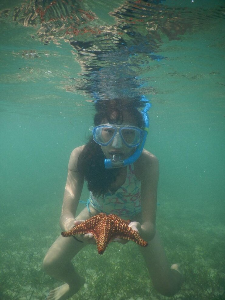 picture of woman snorkeling underwater holding a starfish