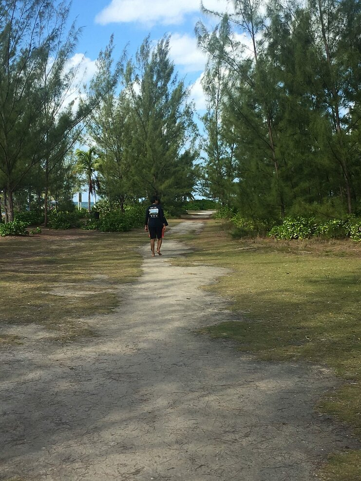 picture of person walking on grass to starfish point