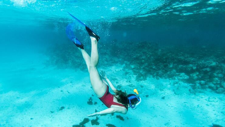 picture of women snorkeling