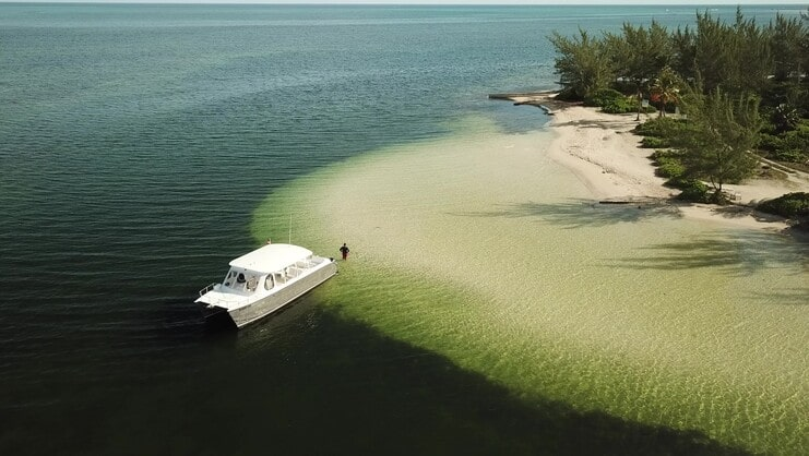 picture of a boat and person at starfish point with sea and trees in background