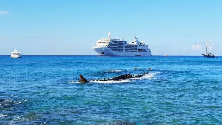 picture of wreck of the gamma with cruise ship in background