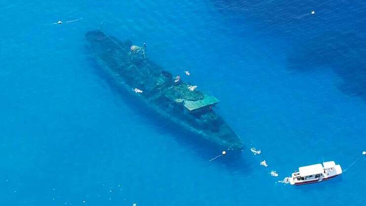 picture of kittiwake from the air
