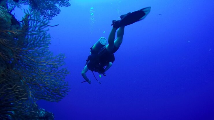 Picture of diver