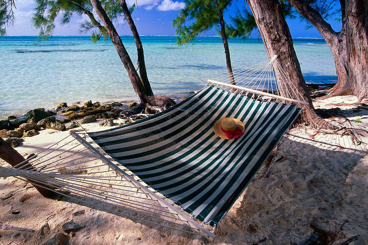 picture of a hammock between two trees on the beach with the sea in the background