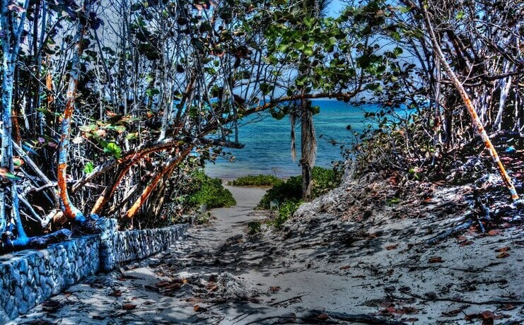 picture of path to enter barefoot beach