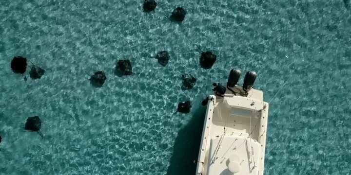 When is the best time to go to Stingray City In Grand Cayman?
